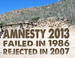 Amnesty 2013