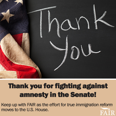 Thank you for fighting amnesty!