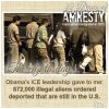 12 Days of Amnesty: Day 8
