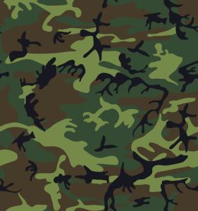 alnilam_Camouflage_1