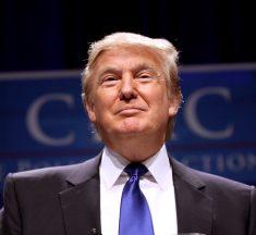 The Pro-Amnesty Lobby Fails to Mimic Trump's Success