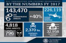 DHS 2017 statistics